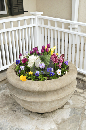 Stone planter with spring flowers stock photo, Stone planter with spring flowers on house patio by Elena Elisseeva
