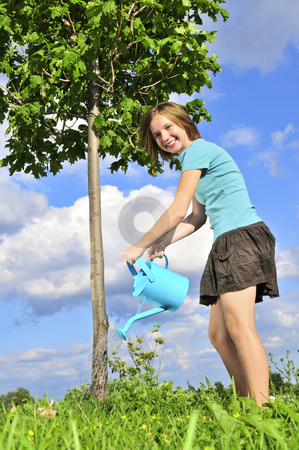 Girl watering a tree stock photo, Teenage girl watering a young tree on blue sky background by Elena Elisseeva