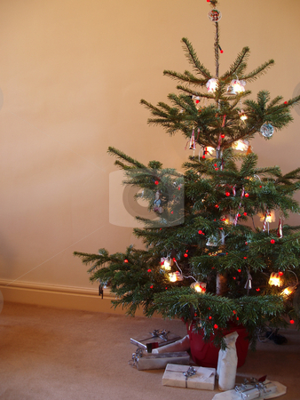 Christmas tree stock photo, First christmas in a new home, a traditional decorated tree by Stephen Gibson