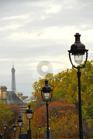 Paris street stock photo, Street in Paris France with lightposts on overcast autumn day by Elena Elisseeva