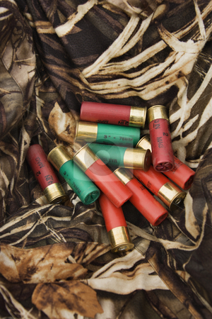 Shotgun shells. stock photo, Still life shot of shotgun shells against camouflage clothing. by Iofoto Images