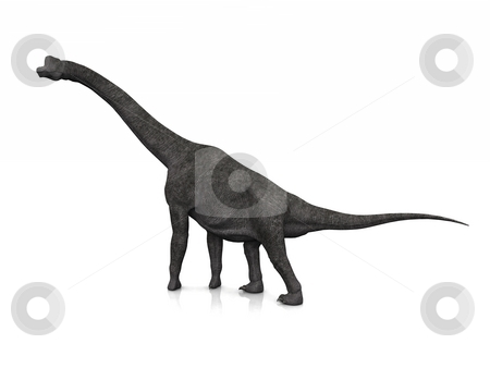 Brachiosaurus stock photo, A Brachiosaurus poses on a slightly reflective floor. by Allan Tooley