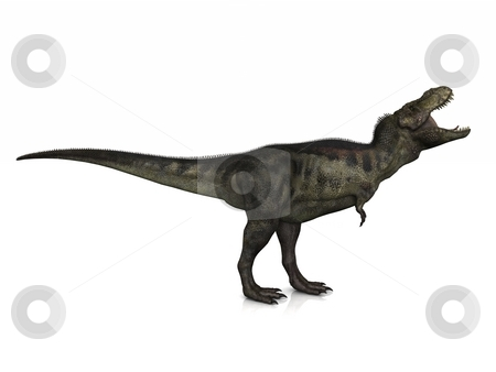Tyrannosaurus Rex stock photo, A Tyrannosaurus Rex poses on a slightly reflective floor. by Allan Tooley