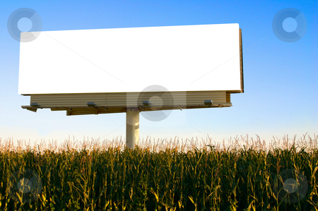 Billboard in a field of corn stock photo, Field of Corn and a billboard in the early evening sun - the golden hour. by Mitch Aunger