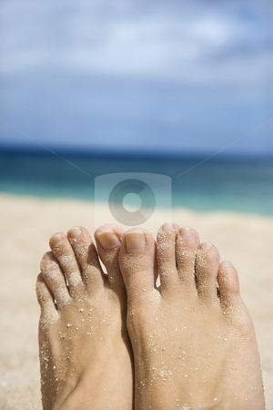 Woman's sandy feet on beach. stock photo, Caucasian young adult woman sandy feet on beach. by Iofoto Images