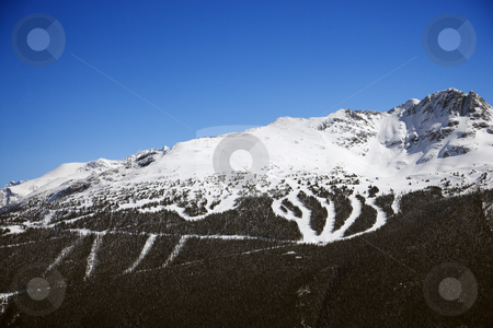 Ski resort trails on mountain. stock photo, Ski resort trails on mountain. by Iofoto Images