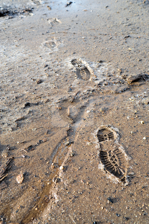 Frozen Mud And Boot Prints stock photo, Boot prints crossing partially frozen mud and ice by Lynn Bendickson