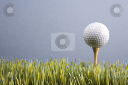 Golf on tee. stock photo, Studio shot of golf ball resting on tee in grass. by Iofoto Images