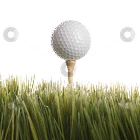 Golf ball resting on tee. stock photo, Studio shot of golf ball resting on tee in grass. by Iofoto Images