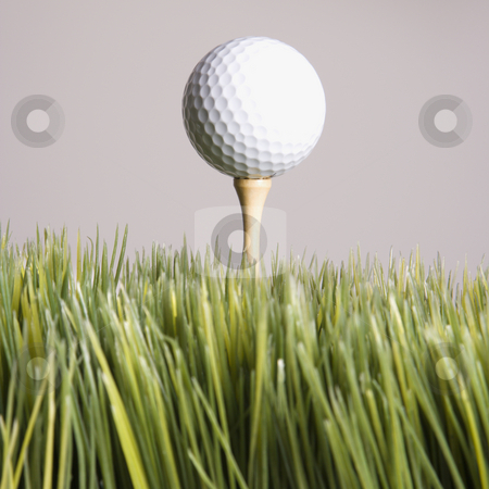 Teed up golf ball. stock photo, Studio shot of golf ball resting on tee in grass. by Iofoto Images