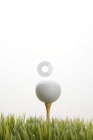 Golf ball on tee. stock photo, Studio shot of golf ball resting on tee in grass. by Iofoto Images