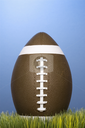 Football resting in grass. stock photo, Studio shot of football resting in grass. by Iofoto Images