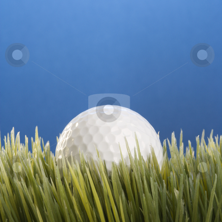 Baseball resting in grass. stock photo, Studio shot of a baseball resting in grass. by Iofoto Images