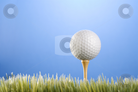 Golfball on tee in grass. stock photo, Studio shot of a golfball on a tee in grass. by Iofoto Images