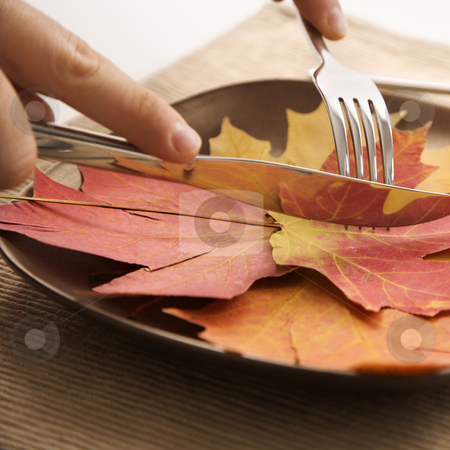 Fall leaf concept. stock photo, Close-up of person's hands carving meal of multicolored leaves using knife and fork. by Iofoto Images