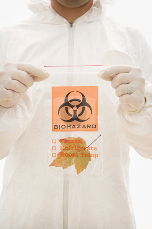 Nature biohazard. stock photo, Man in biohazard suit and rubber gloves holding plastic biohazard bag containing orange Maple leaf. by Iofoto Images