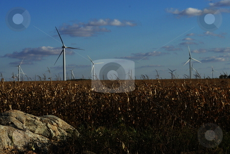 Wind turbine power source stock photo, Late afternoon sun shines on a group of wind turbines surrounded by fields of corn in a southern Minnesota. by Dennis Thomsen