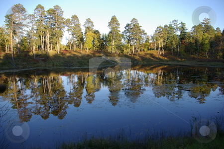 Minnesota reflecting pond stock photo, A small pond in Minnesota's Itasca State Park provides an interesting reflection of sky and trees on a calm fall afternoon.  The park is a favorite tourist destination in Minnesota by Dennis Thomsen