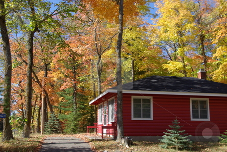 Red cabin escape stock photo, This red painted log cabin on a lake in Minnesota sets off the brilliant fall leaf colors in the surrounding forest. by Dennis Thomsen