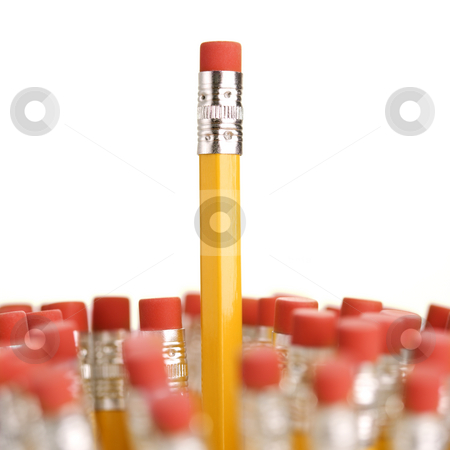 Erasers on pencils. stock photo, Group of eraser ends of pencils with one standing out higher than the rest. by Iofoto Images