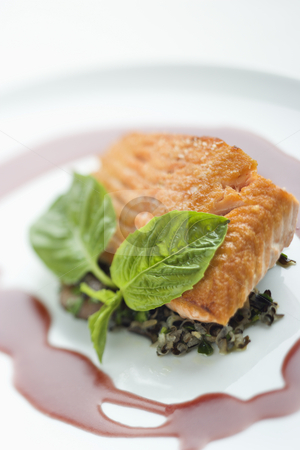 Gourmet meal. stock photo, Still life of gourmet salmon meal with professional presentation. by Iofoto Images