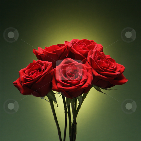 Bouquet of red roses. stock photo, Bouquet of red roses against glowing green background. by Iofoto Images