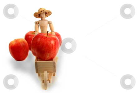 Apple Farmer stock photo, Transporting apple harvest to the market concept by Jack Schiffer