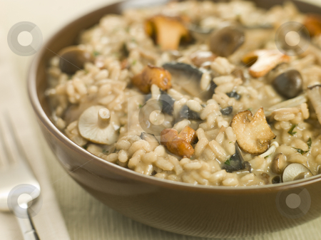 Bowl of Wild Mushroom Risotto stock photo, Bowl of Wild Mushroom Risotto with fork by Monkey Business Images