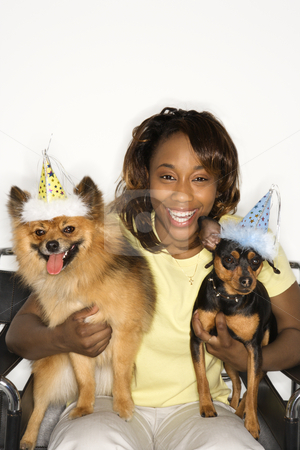 Woman holding dogs in party hats. stock photo, African American young adult female holding brown Pomeranian and Miniature Pinscher dogs wearing party hats. by Iofoto Images