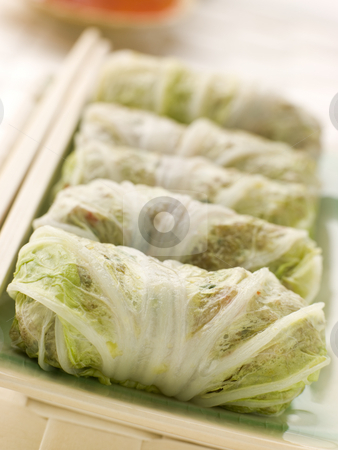 Steamed Pork and Vegetable Cabbage Rolls With Sweet Chili Sauce stock photo, Plate of Steamed Pork and Vegetable Cabbage Rolls With Sweet Chili Sauce by Monkey Business Images