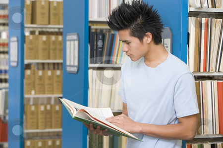 University student reading in library stock photo, University student studying book in library by Monkey Business Images