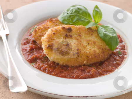 Fried Breaded Mozzarella Cheese with Tomato Ragu stock photo, Plate of Fried Breaded Mozzarella Cheese with Tomato Ragu by Monkey Business Images