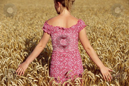 Rear view of young woman standing in wheatfield stock photo,  by Monkey Business Images