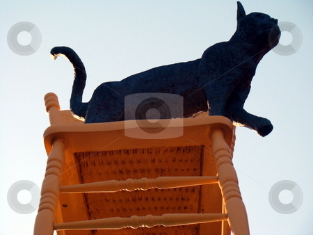 Cat on chair stock photo, A cat, ruling the world from it's chair by CHERYL LAFOND