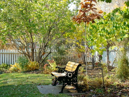 Bench in park in fall  stock photo, Bench in park in fall overlooking garden by CHERYL LAFOND