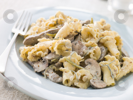 Campanelle Pasta with Beef Fillet Strips in a Sage and Grain Mus stock photo,  by Monkey Business Images