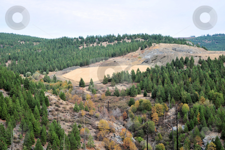 Hillside Erosion Control stock photo, Spreading straw on a Sierra hillside to control erosion before the winter rains by Lynn Bendickson