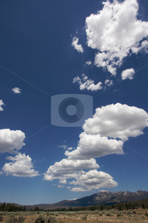 Aged Fence and Clouds stock photo, Puffy Storm Clouds Forming and Aged Fence on a blue sky. by Andy Dean