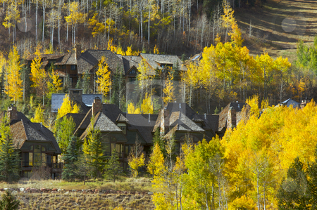 Aspen Condos - Getting Ready for Winter stock photo, Aspen Condos Amidst the Changing Aspen Pines by Andy Dean