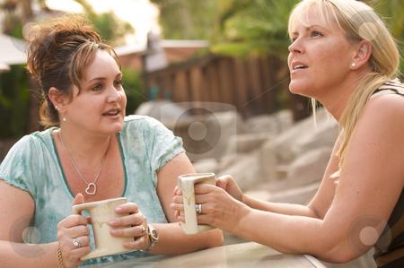 Girlfriends Enjoy A Conversation stock photo, Two Girlfriends Enjoy A Casual Conversation by Andy Dean