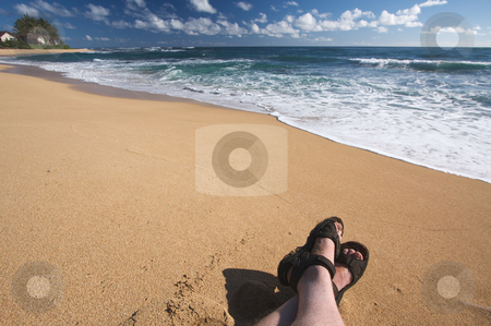 Man Relaxes on Tropical Shoreline stock photo, Man Relaxes on Tropical Shoreline on Kauai, Hawaii by Andy Dean