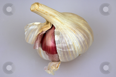 Uncovered stock photo, A garlic bulb with one red clove showing by Paul Phillips