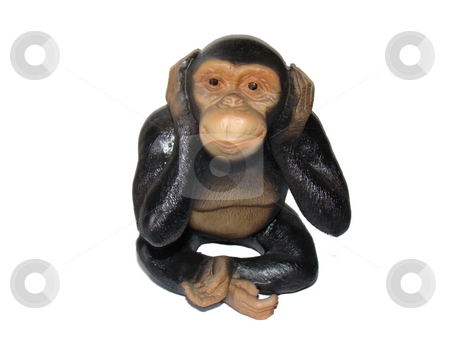 See No Evil stock photo, See no evil monkey isolated on white by CHERYL LAFOND