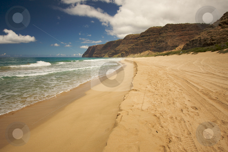 Polihale Beach, Kauai stock photo, Polihale Beach on Kauai, Hawaii by Andy Dean