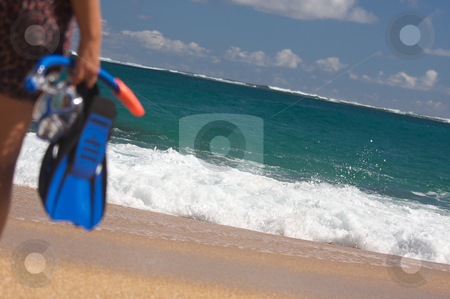 Woman Holding Snorkeling Gear stock photo, Woman Holding Snorkeling Gear on the shoreline. by Andy Dean