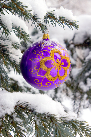 Christmas-tree. stock photo, Violet christmas glass ball hanging on the tree in snow. by Yury Ponomarev