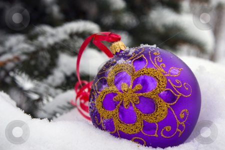 Christmas time. stock photo, A violet christmas bauble sitting in a bed of snow. by Yury Ponomarev