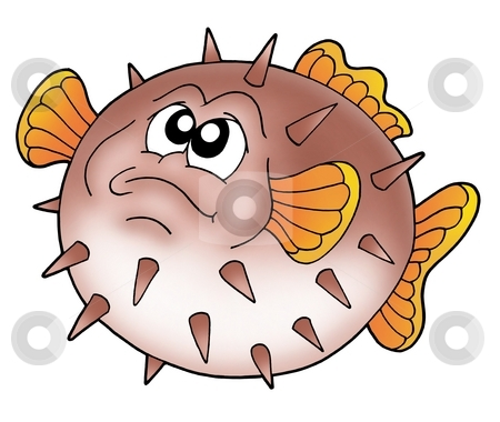 Balloon fish stock photo, Brown balloon fish - color illustration. by Klara Viskova