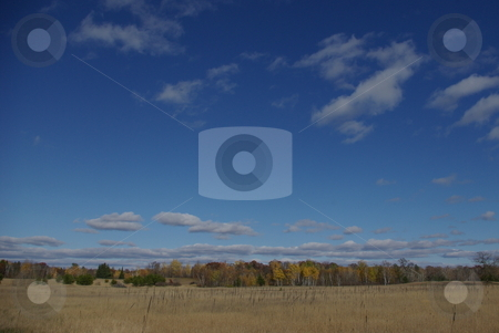 Big sky and muted fall colors stock photo, Late afternoon sunshine can really draw out the sky colors.  The skyline shows a long stretch of hardwoods trees displaying muted fall colors off a flat strech of Minnesota prarie. by Dennis Thomsen