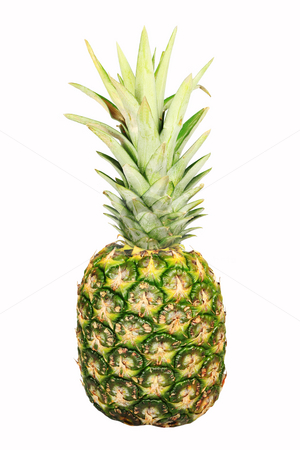 Pineapple stock photo, A lone pineapple isolated on white background by Jonas Marcos San Luis